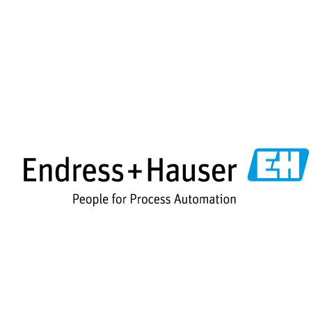 Logo de Endress+Hauser