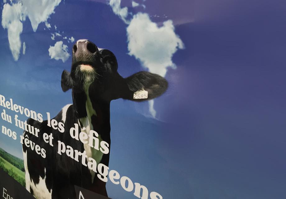 Affiche réalisée pour Alsace Lait pour leur communication interne