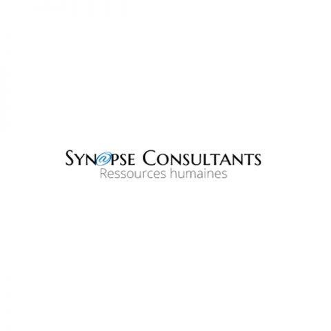 Logo Synapse Consultants