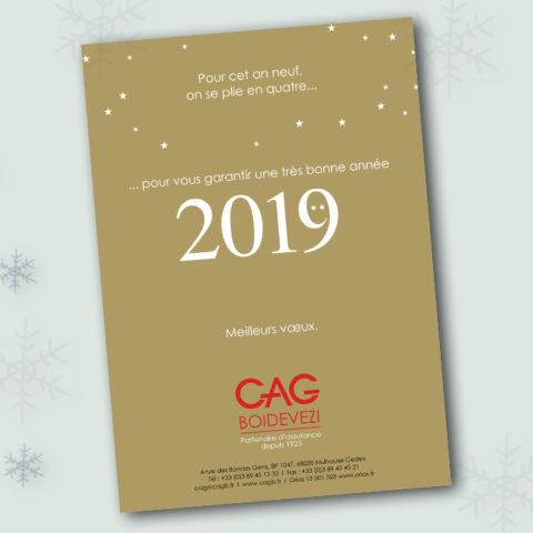 Carte de voeux 2019 réalisée pour CAG BOIDEVEZI