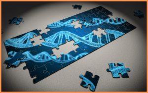 La plateforme de marque, l'ADN de votre entreprise