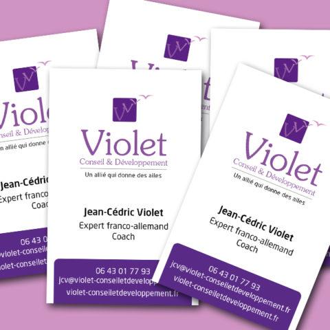 Cartes de visites pour Violet Conseil et Développement image entreprise