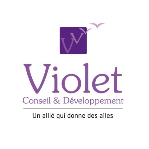 Logo Violet Conseil et Developpement