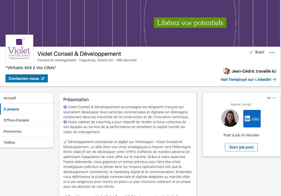 Violet Conseil et Developpement sur les reseaux sociaux LinkedIn