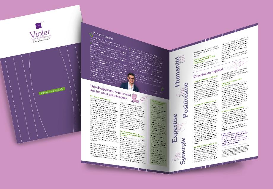 plaquette corporate entreprise Violet Conseil et Développement